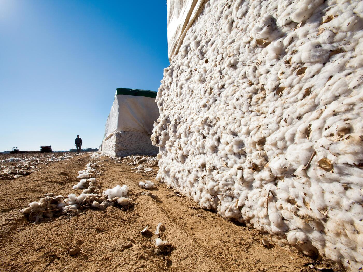 S-LAB: Aiding Gap's Move to Recycled Cotton