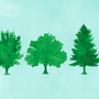 six green trees, all of different varieties